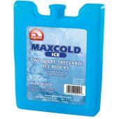 Παγοκύστη Ice Block Small 200Gr IGLOO 41031
