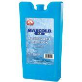 Παγοκύστη Ice Block Medium 400Gr IGLOO 41032